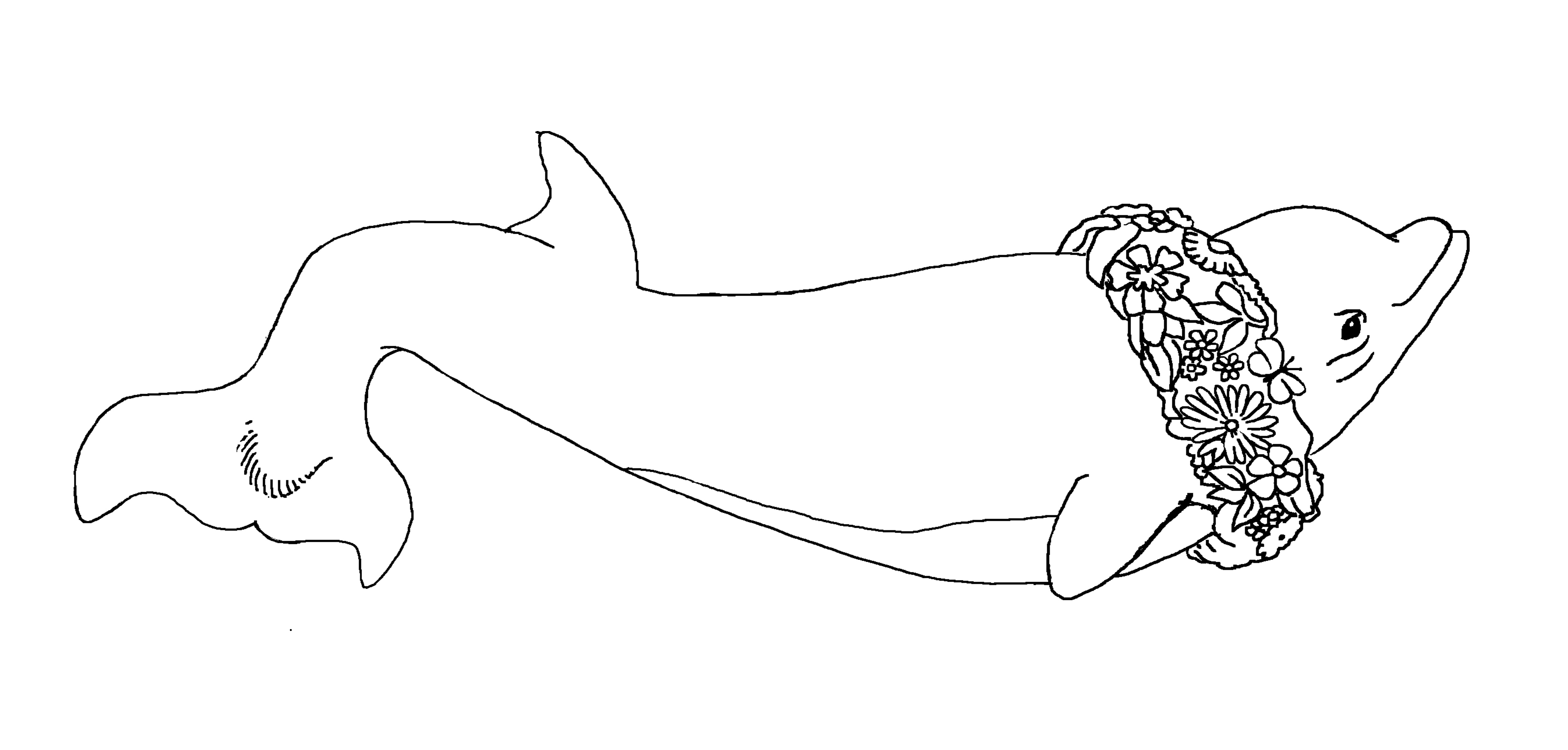 Coloring Pages Carousel Of Happiness Nederland Colorado