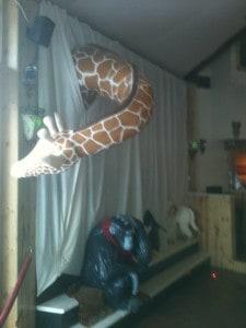 giraffe final 2 25 2013 006