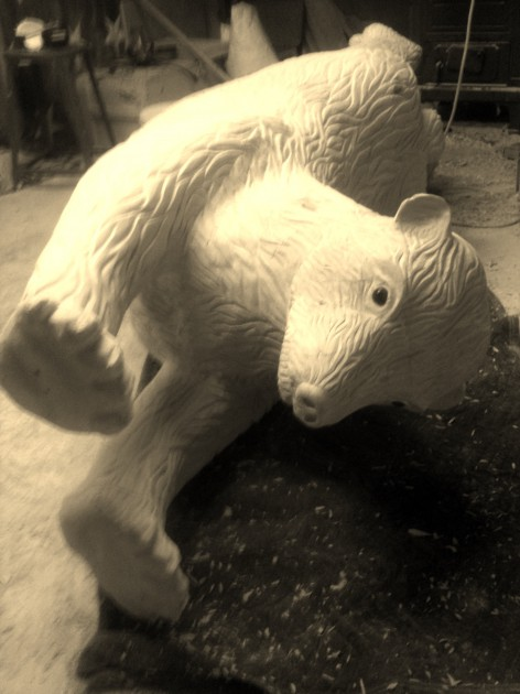 polar bear november 13 2013 010